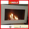 OEM Fireplace with Remote Control