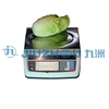 Digital weighing scale (LED displayer)