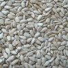 organic sunflower kernels