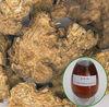 Atractylis oil