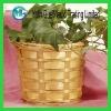 Bamboo woven planter basket