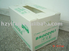 2012 new style PP hollow sheet made foldable Corrugated Plastic vegetable and fruit packing box for transport (YF7025)