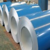 pre-painted galvanized sheets and coil