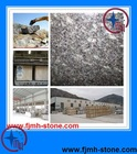 China Blue Pearl Granite slab