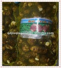 China fresh taro supplier