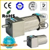 Small reversible AC motor with gear box gearmotor motor