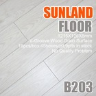 B203 White Oak 1 strip