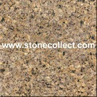 Gold Leaf Granite Tiles, Big Slabs
