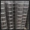 galvanized chicken wire mesh