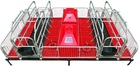 farrowing pen for two sows 2.1m*3.6m OEM piglet's flooring is plastic high quanlity