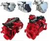 Dongfeng Marine diesel engine