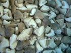 Top sale frozen shiitake mushroom new crop