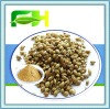 100% Natural Spices Chinese Parsley Powder/ Cilantro Powder
