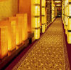 Hotel corridor carpet exhibition carpet