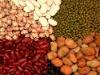 2011 new crop Chinese kidney bean