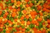supply new crop IQF frozen mixed vegetable