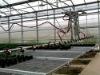 Movable sprinkler system
