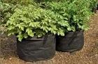 PP grow bag non woven