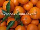 Fresh Sweet tangerine