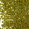 low price 2011 new Green Mung beans