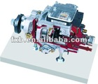 dissection Model BOSCH VE pump (VP30)
