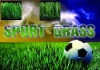 soccer grass artificial lawn