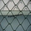 Popular sell PVC Coated Chain Link Fence