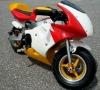 (49cc) motorbike LWPB-608D