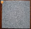 Chinese Grey Granite Stone-G603