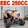 EEC 250cc Three Wheel Motorcycle