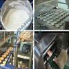 economic muffin/cup cake/plum cake/ custard cake/ chocolate cake/ choco coated cake semi-auto production line