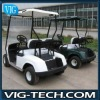 2 Seats Electric Golf Carts