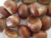 China Fresh Chestnuts New Crop 40-60 pcs/100g