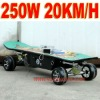 250W Remote Control Electric Skateboard