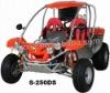 250cc EEC Buggy