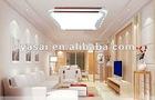 minimalist living room lights/ ceiling lamps