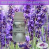 Lavender Oil - Natural Fragrance
