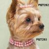 2010 fashion rhinestone pet collar