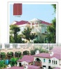 2012China Low price exterior decoration material 300*400mm roof tile