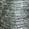 high quality electro galvanized barbed wire