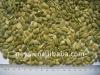 Chinese pumpkin seed kernels shine skin AA