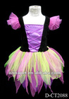 2012 Fairy Costume