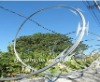 Plastic Razor Barbed Wire(factory supllier)