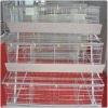 Ladder type chicken cage