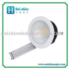 25W LED ceiling light warm white 110V