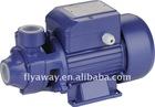 1/2HP Vortex Pump QB60