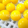 Megio Yellow paintballs 2000 rounds