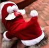 Fashionable pet Christmas dress