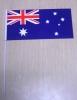 Hand Flag, Embroidery Flag, Sports Flag, Promotional Flag, Football Flag