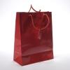 elegant gift paper bag